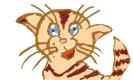 Kitty_a_1