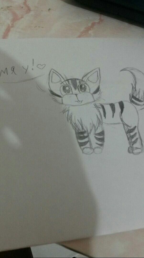 Котенок рисунок карандашом