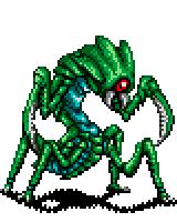 Locusta.png
