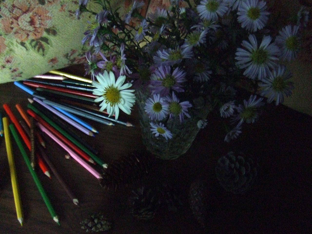flowersandpencil2.jpg